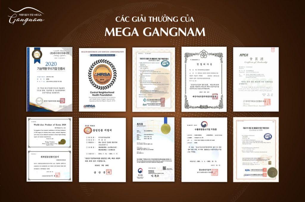 mega-gangnam-la-cong-ty-gi-1